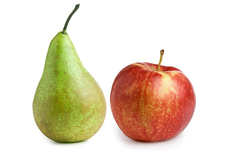 Apple and peer to show difference between SEO and website optimization