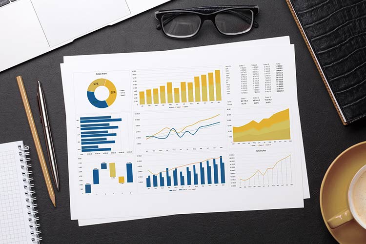 page full of graphs representing seo plan