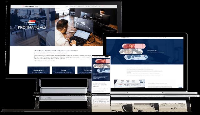 Project-boekhouder-eindhoven-profinancials-Portfolio-Marketing-Spectrum